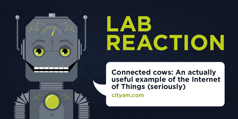Lab Reaction: Connected cows: An actually useful example of the Internet of Things (seriously)